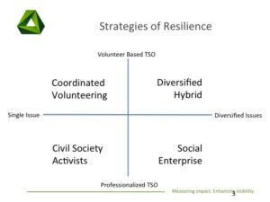 strategies-of-resilience