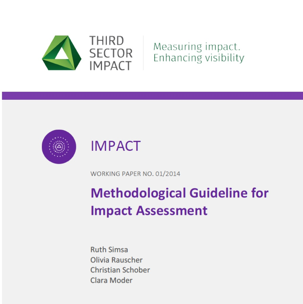 TSI Working Paper Series No. 1: